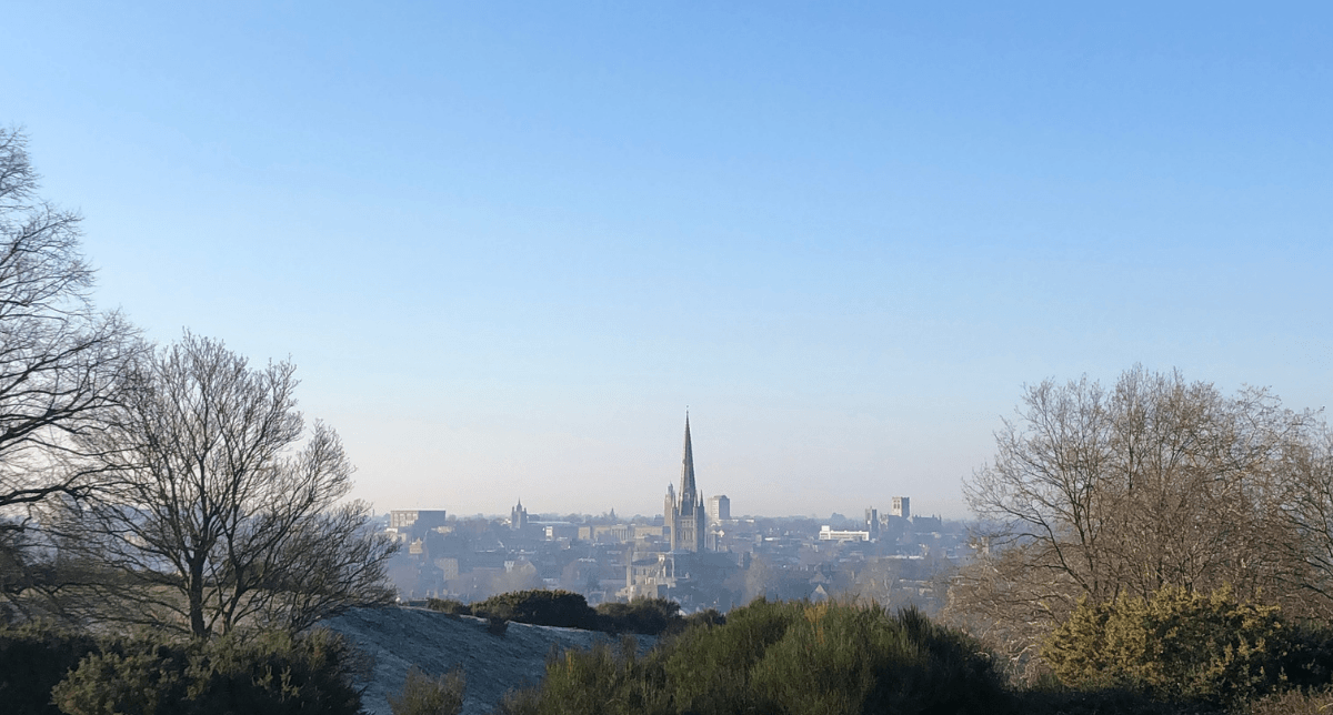 The view from Mousehold Heath