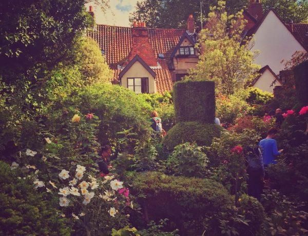 in Norfolk   Norwich Heritage Open Days 2015