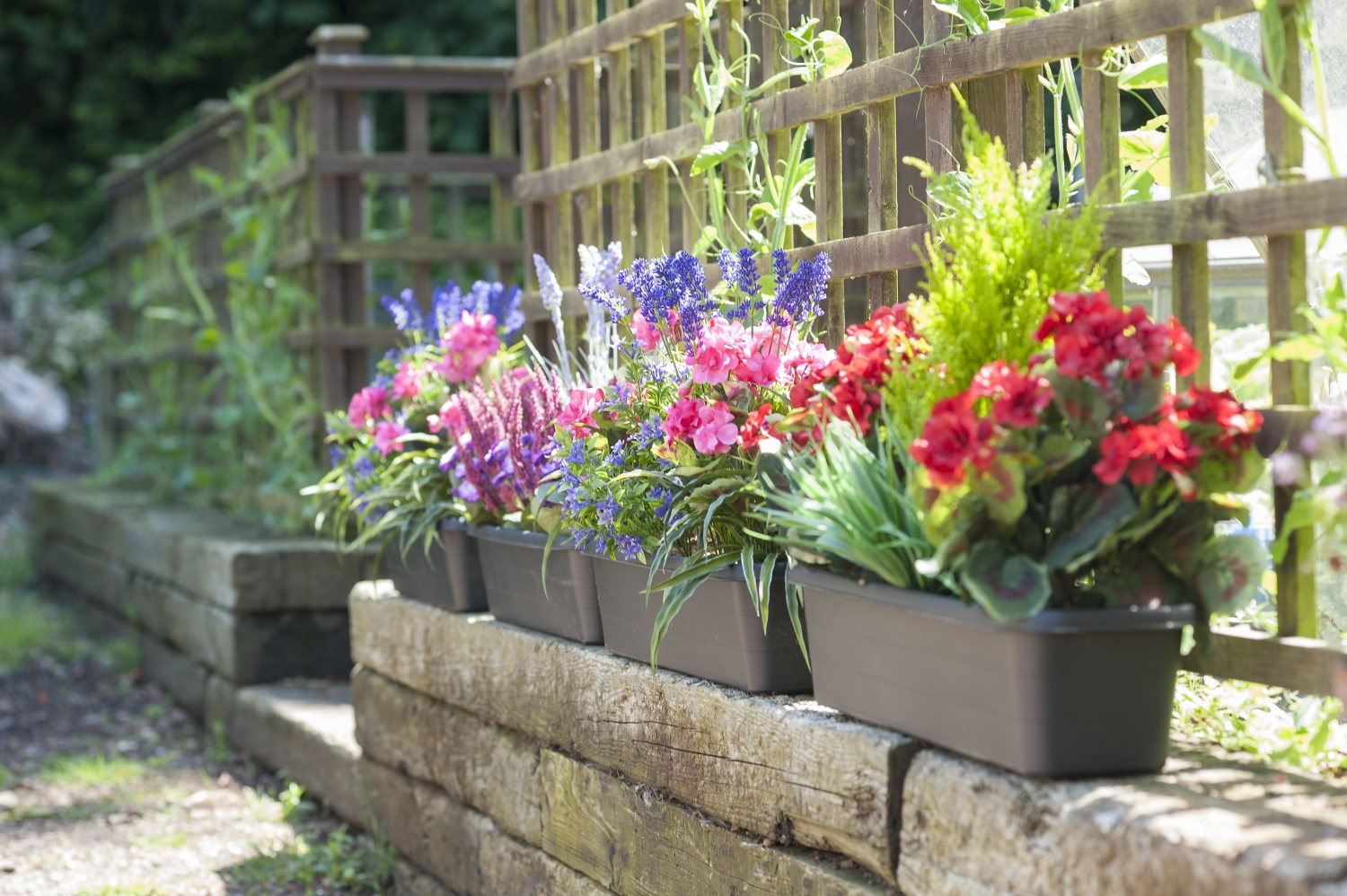 Blooming Artificial Window Boxes